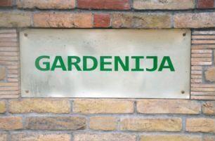 Rasadnik-Gardenija.jpg