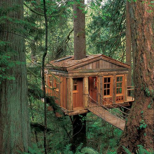 Život s pticama: 9 kuća na drvetu