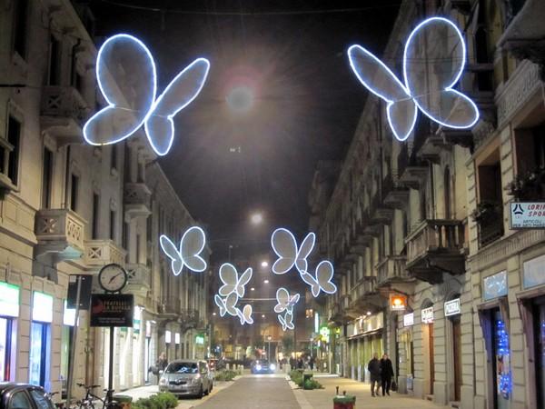 Leptiri u Milanu