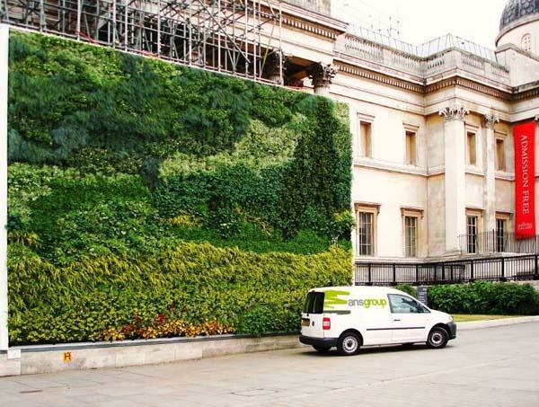 Živi zid inspirisan slikom Van Goga