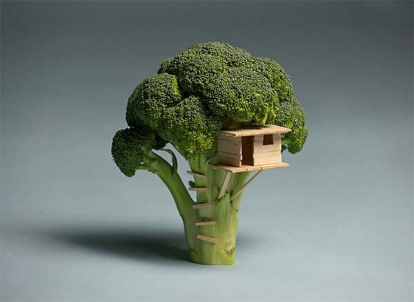 Kuća brokoli