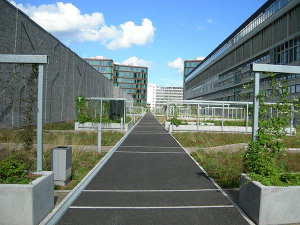 Urbane oaze: konkurs za vertikalne bašte i zelene krovove