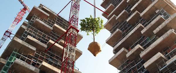 Gradi se vertikalna šuma u Milanu