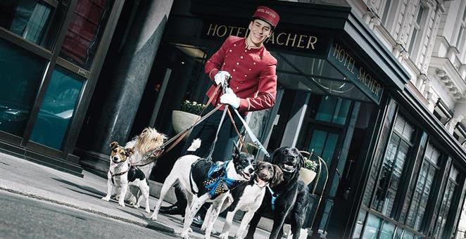 Slavni hotel Sacher u Beču ponudio i sobe za pse
