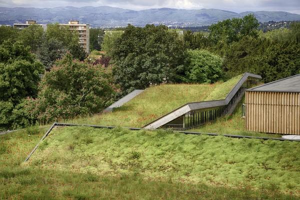 school-complex-in-rillieux-la-pape-tectoniques-architects_4