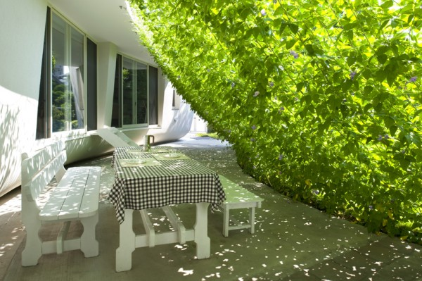zelena-tenda-2