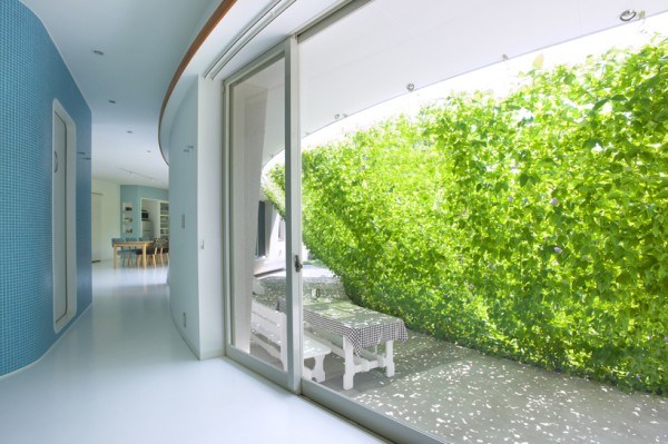 zelena-tenda-3