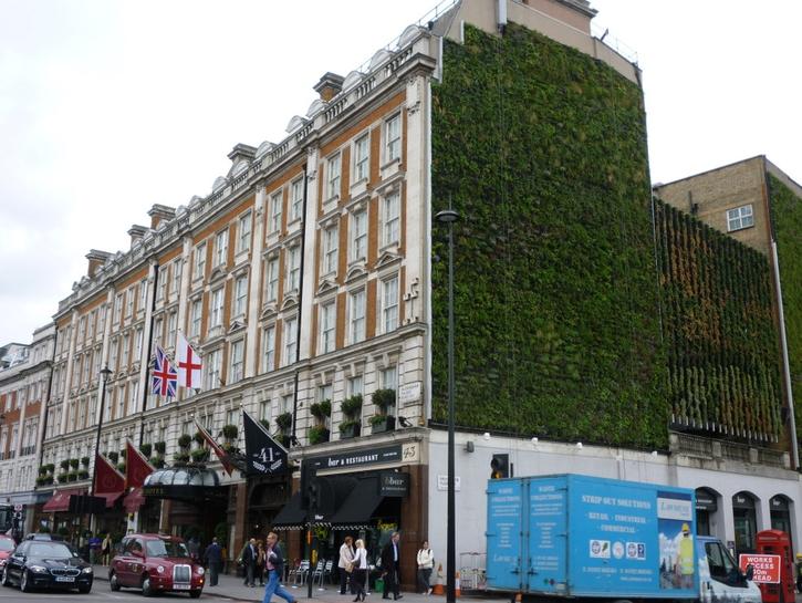 Ovo je najveći zeleni zid u Londonu