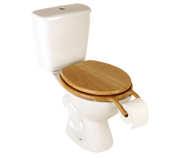 Toilet-with-paper