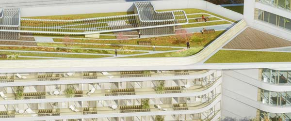 Gajenje povrća na krovu nove poslovne zgrade