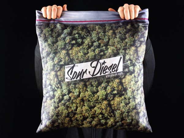 Giant-Stash-Pillowcase-1_1