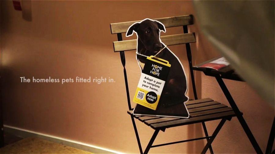 Kako Ikea promoviše udomljavanje pasa iz azila