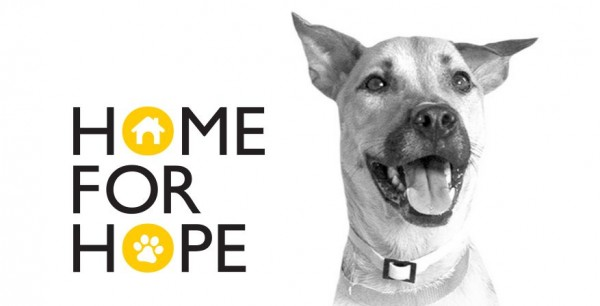 ikea-home-for-hope