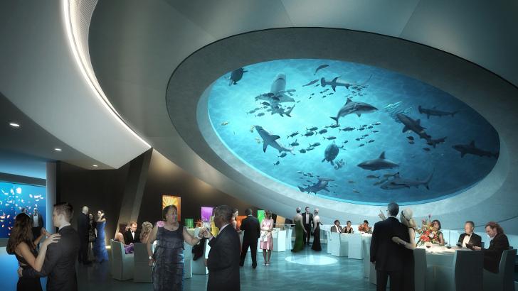 Spektakularni akvarijum od 2.000 kubika u muzeju u Majamiju