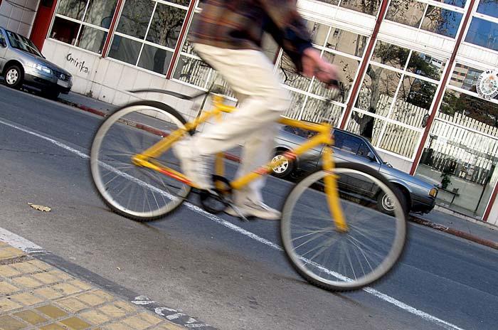 Biciklistička staza Zrenjanin – Temišvar duga 75 kilometara