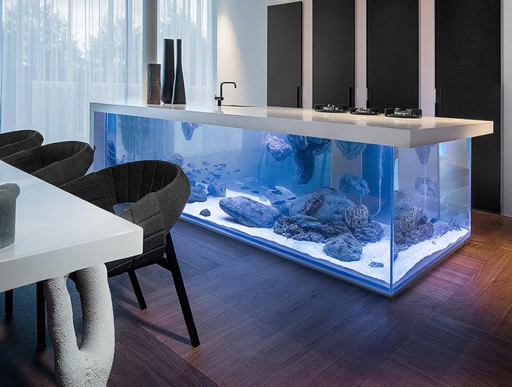 Kuvanje s ribicama: Akvarijum kao kuhinjsko ostrvo
