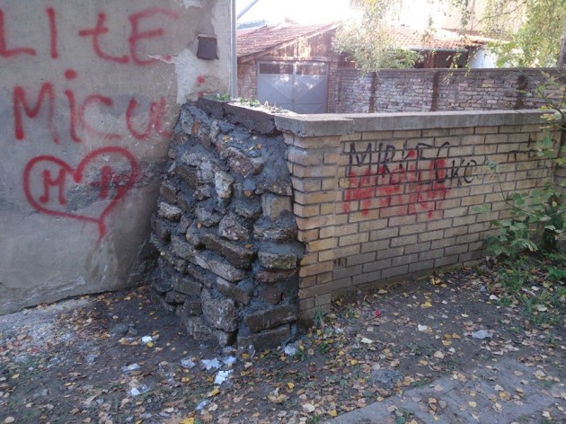 zid-protiv-pesaka-1