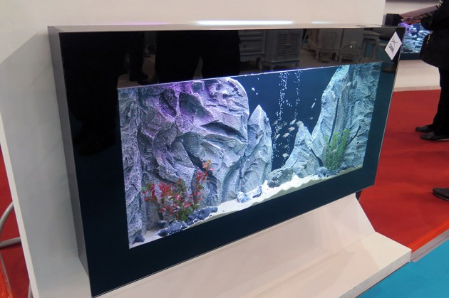 zidni-akvarijum