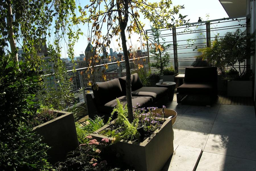 Ozelenjavanje terase: Vaša mala gradska oaza
