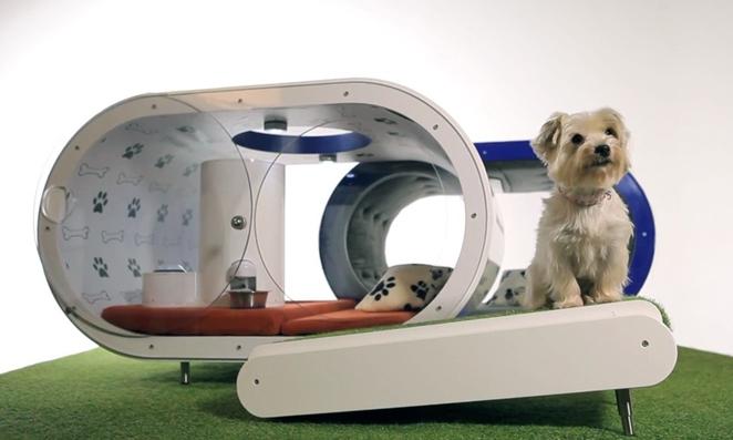 Samsung predstavio pametnu kuću za pse