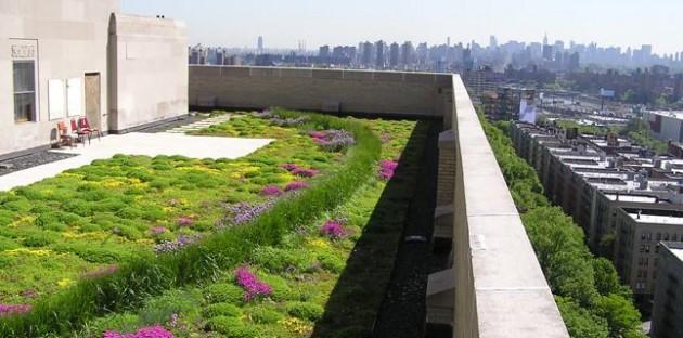 zeleni-krovovi-solarni-paneli-2