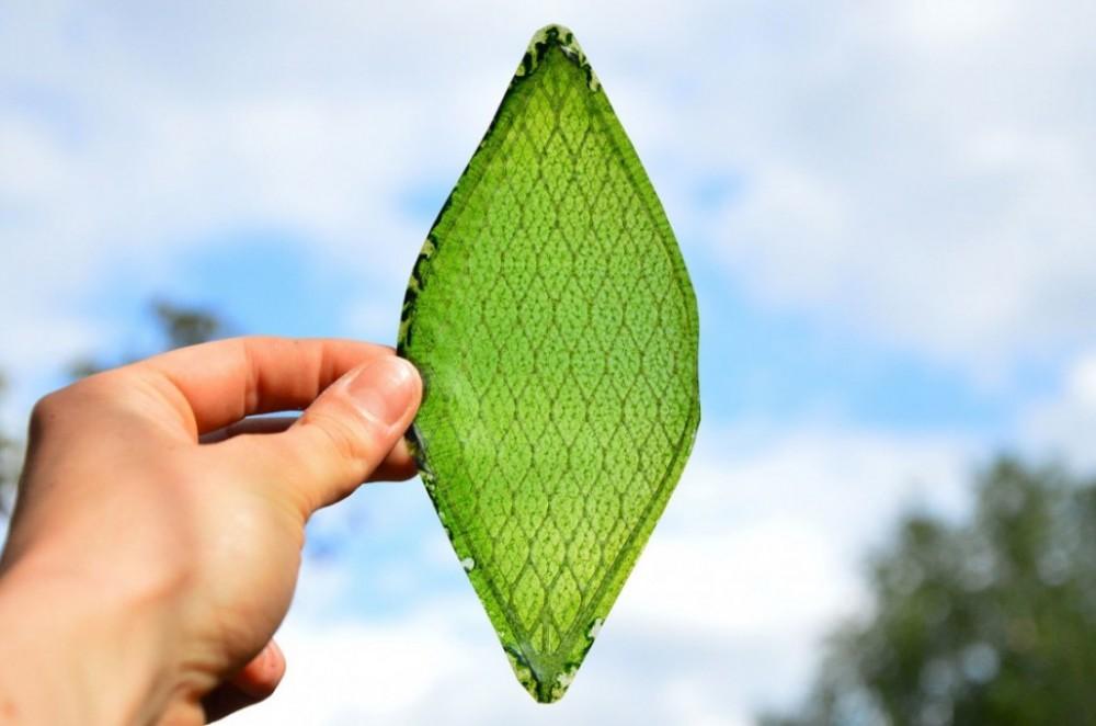 Veštački list: Nova era zelenih fasada i ventilacionih sistema