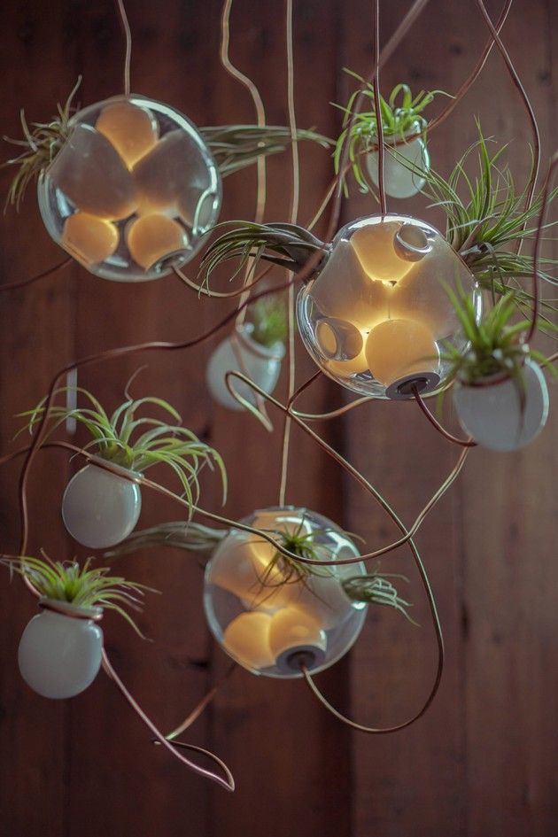 bocci-svetiljke-sa-biljkama