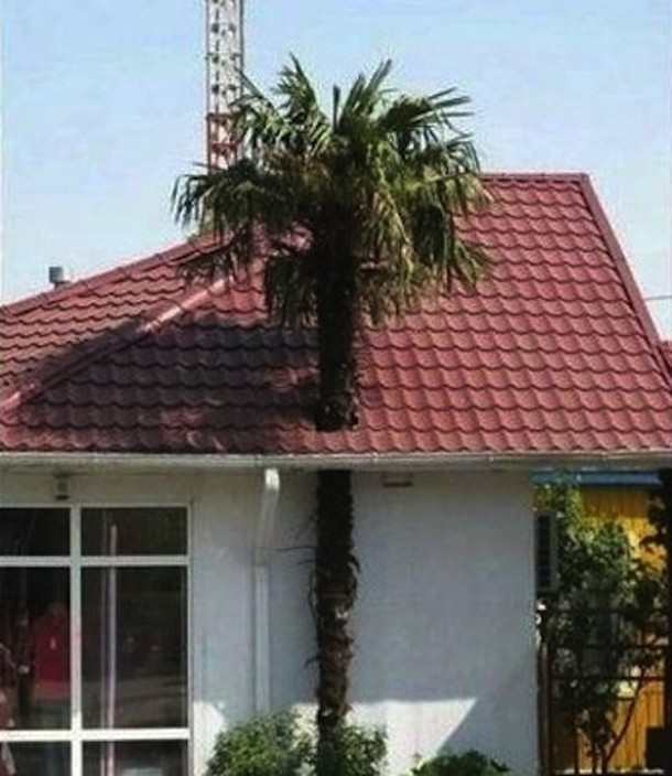 engineering-fails-02-610x704