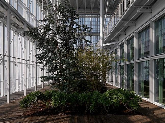 Banka ili botanička bašta? Poslovni prostor kao staklenik