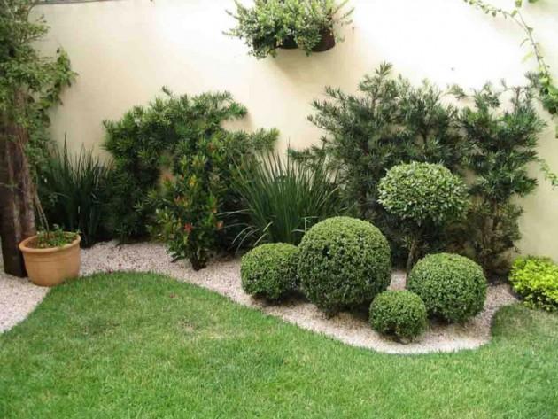 dvoriste-biljke