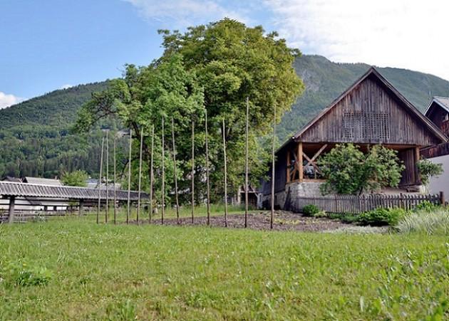 Alpine Barn Apartment
