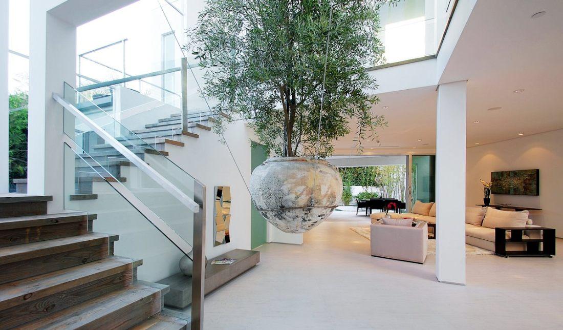 Tona nad glavom: Saksija s drvetom okačena o plafon kuće