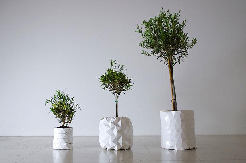 Zbogom presađivanju: Saksija koja raste zajedno s biljkom