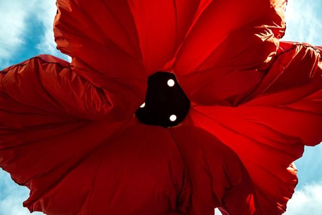 Rasveta u obliku cveca 06