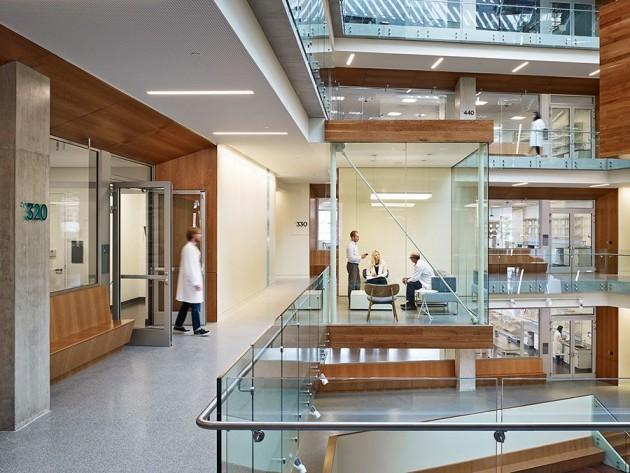 Allen Institute 04