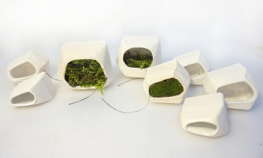 Modularni zeleni zid stvara energiju zahvaljujući mahovini