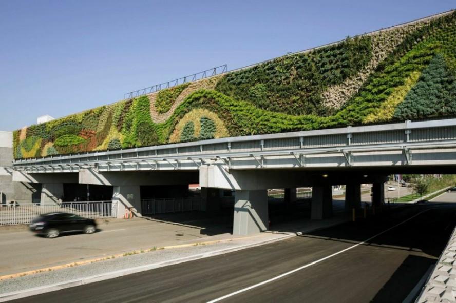 Najveći zeleni zid u Severnoj Americi sa 120 različitih biljnih vrsta