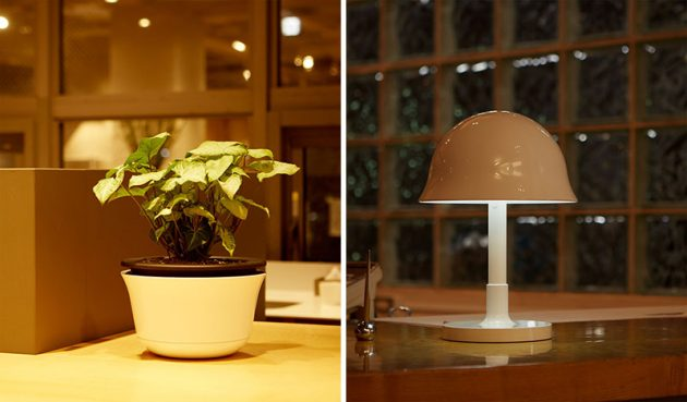 Lampa ili slem 02