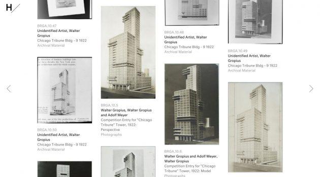Bauhaus na Harvardu 03