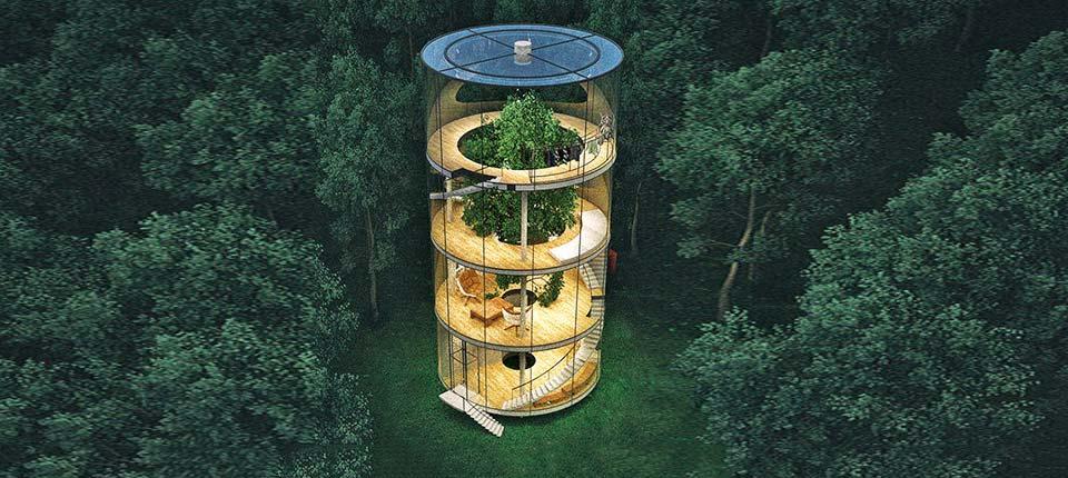 Gradi se staklena kuća oko velikog drveta u planinama Kazahstana