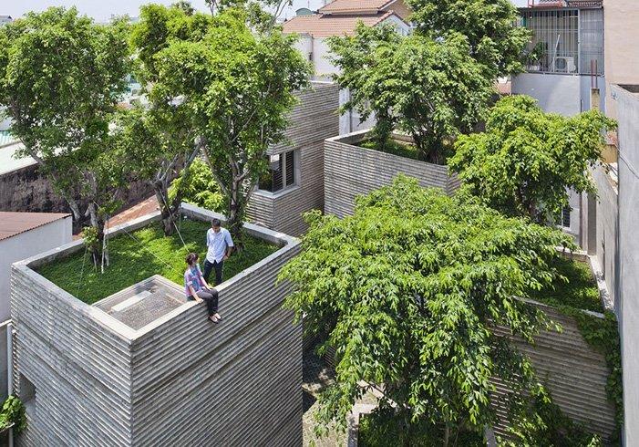 votong-tree-house 2