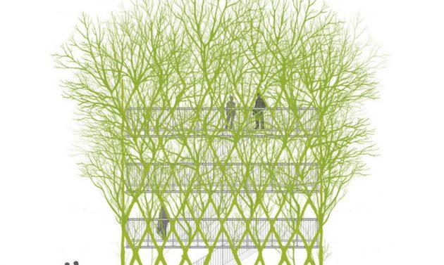 Baubotanik-living-architecture-1-1020x610