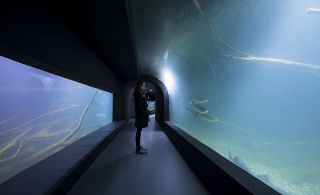 karlovac-podzemni-akvarijum-03