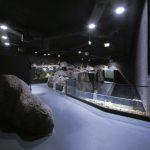 karlovac-podzemni-akvarijum-09