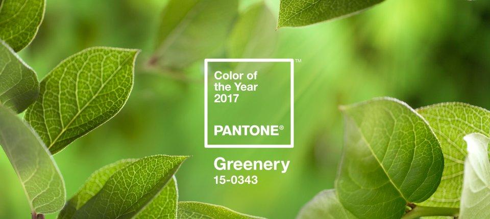 Dizajneri, obratite pažnju: Ova boja će obeležiti 2017. godinu
