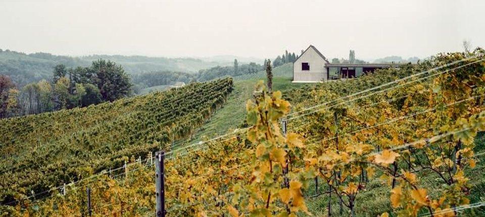 Nov život za staru vinariju u austrijskim brdima