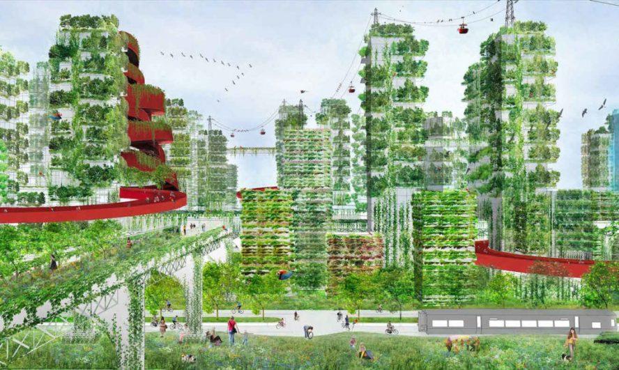 Kina gradi Šumski grad u borbi protiv zagađenja vazduha