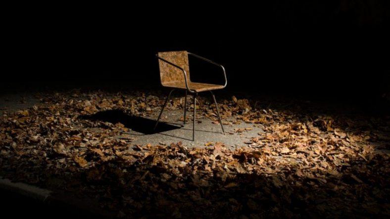 Ovu stolicu od lišća možete bez griže savesti baciti i u šumu