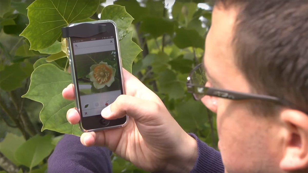 Shazam za biljke olakšava život pejzažnim arhitektama