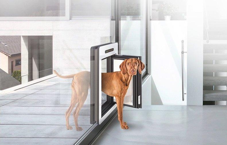 Vrata za pse pogodna za ugradnju na pasivnim kućama